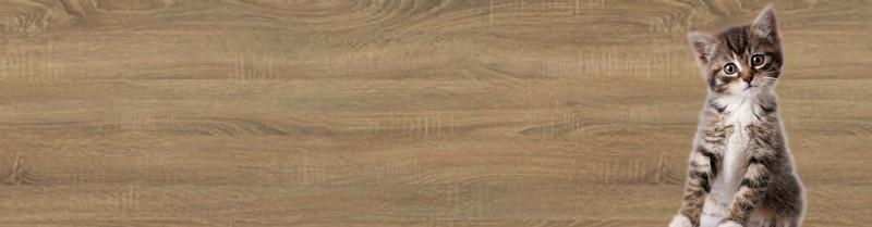dřevo ukázka