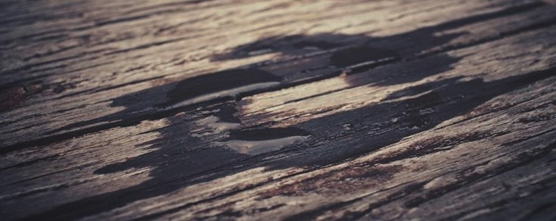 vlhkost na dřevě 2