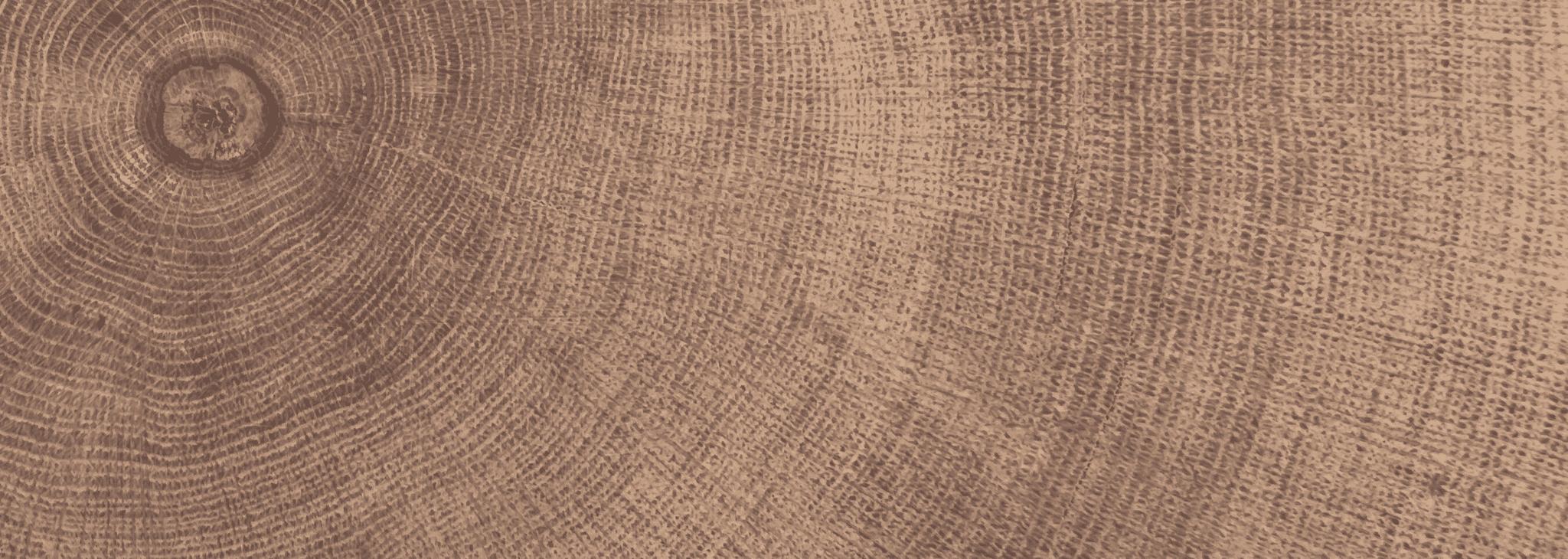 Dřevěné podlahy Esco - úvodní